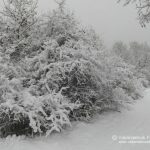 Winter in Frankenau