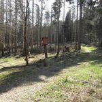 Bosweggetjes in het Kellerwald