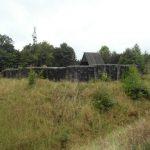 Eisenberg - Burgruine